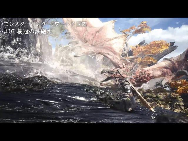 モンスターハンター:ワールド図鑑 07 樹冠の鉄砲水