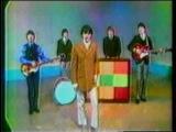 The Buckinghams - Kind Of A Drag (news clip)