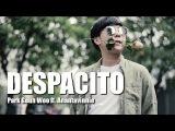 KOREAN VERSION DESPACITO COVER - Park Geun Woo ft. AnantaVinnie