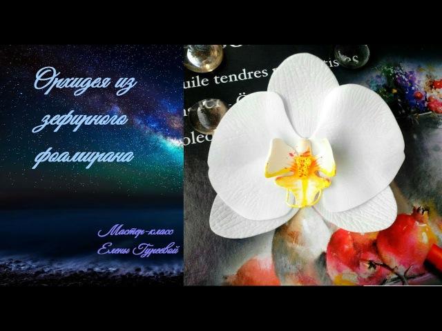МК Орхидея Фаленопсис из зефирного фоамирана.Мастер-класс Елены Гуреевой.