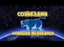 Созвездие Большая медведица Познавательное видео для детей