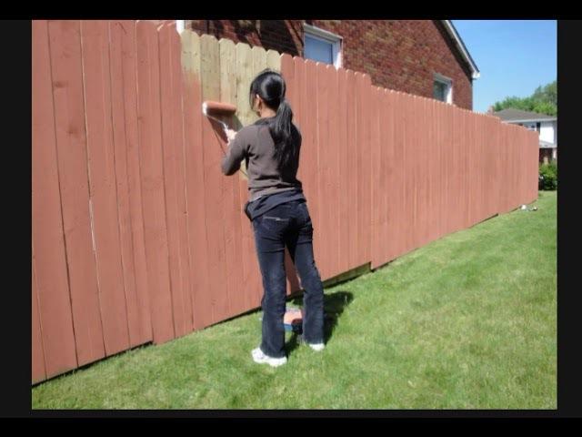 забор покрасьте