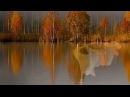Осень рыжая бестия David Garrett