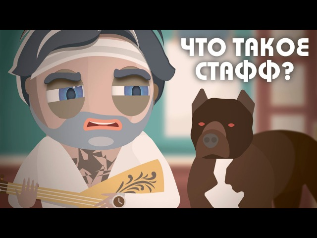 Узнай-ка - Что такое Стафф 24 | Шариков из собачьего сердца | Без DIZASTER vs OXXXYMIRON