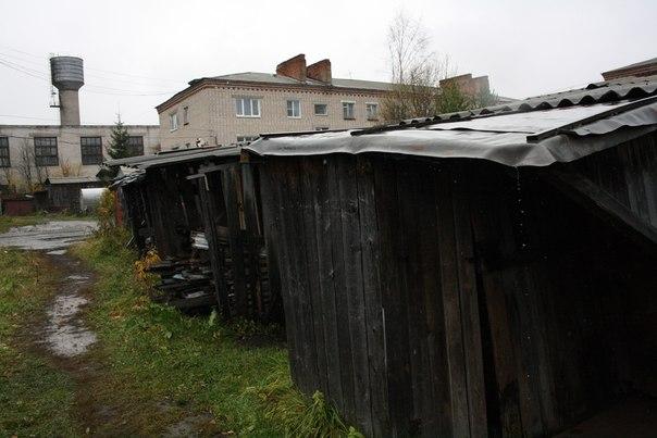 Сараи — неотъемлимая часть Черёмушек, да и всего города в целом.  14 ноября 2017