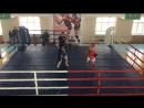 Иван Гаев 1 раунд
