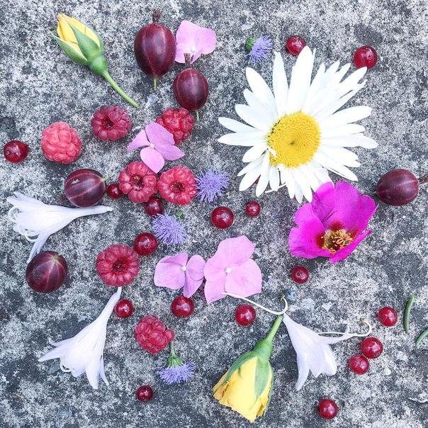 фото из альбома Ольги Лукьянцевой №15