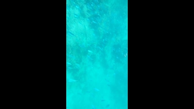 воды тихого океана, бухта не помню название