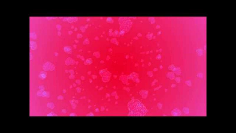 Футаж - красивый фон ко Дню Святого Валентина 7