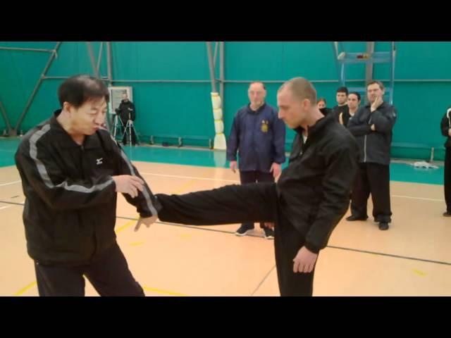 Applicazioni Tongbei Quan in allenamento (Gran M° Guan tieyun; M° Falanga)