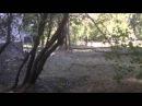 26 июля 2014. Лисичанск РТИ дом №38а после обстрела 26 07 14
