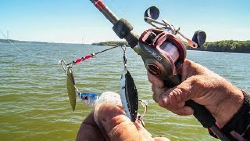 KVD's Secrets to Power Fishing Spinnerbaits