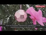 В Вологде наряжают елки