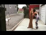 Ронда Роузи троллит своего пса