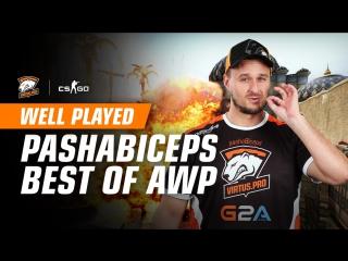 WELL PLAYED   Лучшие моменты pashaBiceps с AWP в 2017