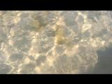 Море 27.08.2017 Анапа Витязево пляж Витязь
