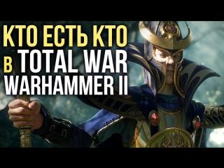 КТО ЕСТЬ КТО В TOTAL WAR- WARHAMMER II Скавены, Тёмные эльфы, Высшие эльфы, Ящеролюды