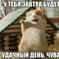 Анкета Макс Сабыров
