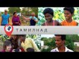 В отпуск в Индию. Часть 9. Тамил-Наду. В гостях у тамилов