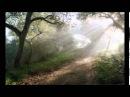 Шмуэль Ципен, ТРУМА - ТОРА (Исход 25:1-27:19)
