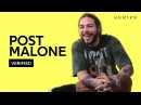 Post Malone Patient Official Lyrics Meaning Verified