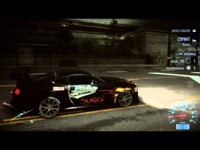 Need for Speed™_low fps