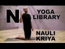 NAULI KRIYA - Наули - Техника выполнения