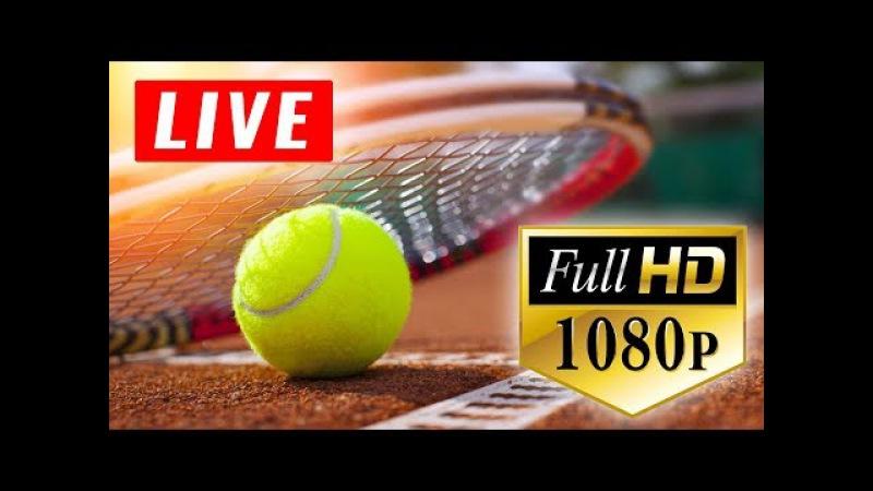 DAY 2: Aryna SABALENKA (BLR) vs Coco VANDEWEGHE (USA) FINAL FED CUP Tennis LIVE HD