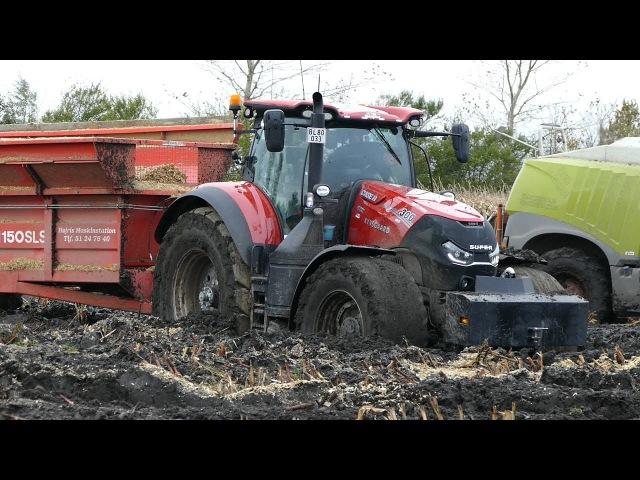 Case IH 300 Optum Working Hard in The Mud During Maize / Corn Chopping | Häckseln 2017