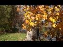 Песня НАД РЕКОЙ КАЛИНА СПЕЛАЯ Микулино Городище Храм Михаила Архангела