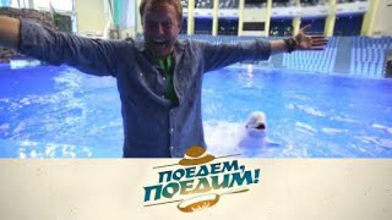 Поедем, поедим! Владивосток