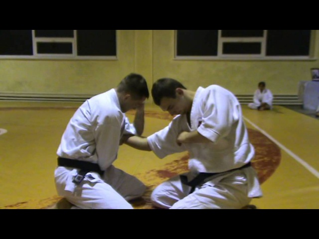 Бушинкан Дзю Дзюцу - ката больових на лікті сидячи. (Bushinkan Jiu Jitsu)