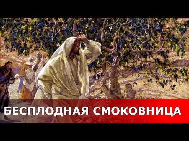 Бесплодная смоковница.Священник Игорь Сильченков