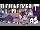 The Long Dark Wintermute #5 - Как я вас не заметил!
