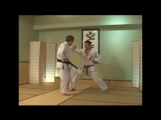 Kata - Heian Yondan - bunkai, Kanazawa (SKIF)
