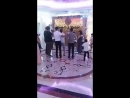 Homie на армянской свадьбе