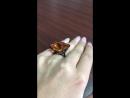 Авторское кольцо с Бриллиантами и Цитрином цвета шафран
