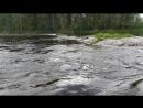 Река очень интересна- весьма широка и очень правильной глубины.