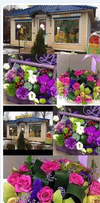 Доставка цветов в карелии цветы для невесты николаев