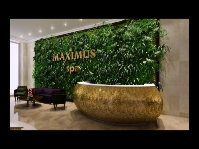 Искусственная зелень использование в декоре и дизайне Фитостена