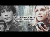 Bellamy &amp Clarke Center of attention #1