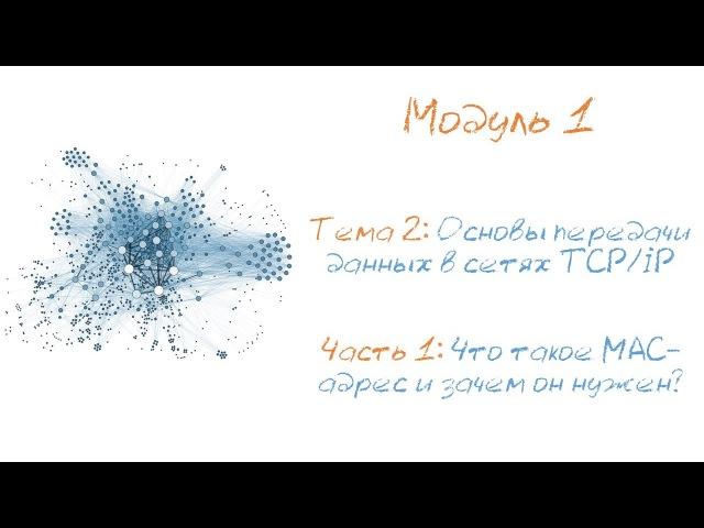 Что такое MAC-адрес и зачем он нужен? Назначение и структура физических адресов в компьютерной сети.
