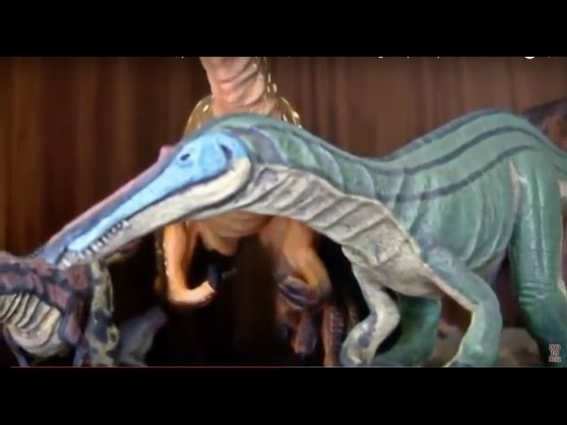Patrx's collection of dinosaurs, prehistoric animals, and Power Rangers (2014)