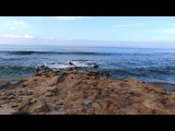 Bee Hunter - Blue Lagoon (Original Mix) PMW003