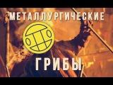 Грибы - Металлургические (кавер, сибирский ответ)