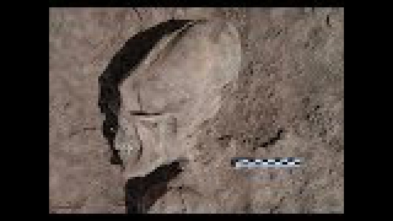 The Out of Place Discoveries that Contain Evidence Of Ancient Aliens