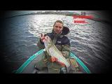 БОЛЬШИЕ ГОЛАВЛИ - БОЛЬШОЙ РЕКИ. Рыбалка в Волгограде.