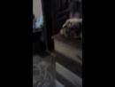 Одно из моих видео на ютуб канале