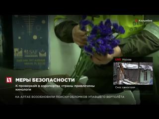 В Колумбии проверяют партии цветов, идущих на продажу зарубеж