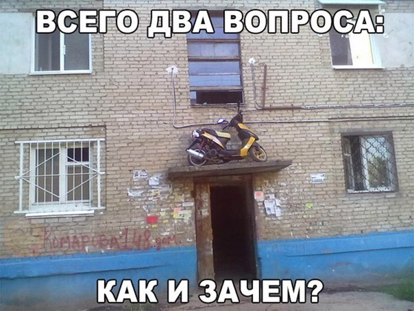 Фото №456261094 со страницы Марины Явтушенко